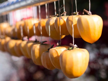 Drying Persimmon, Yamanashi Highlands