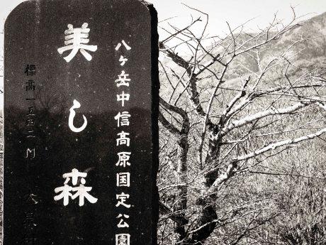 Utsukushi no Mori, Yamanashi Highlands