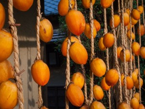 Drying Persimmon