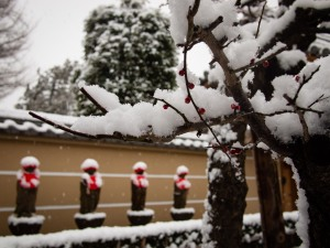 Shinto Shrine in Snow