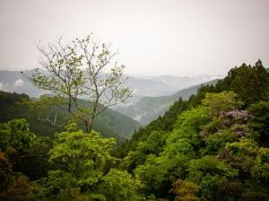 Mount Mitakesan, Tokyo