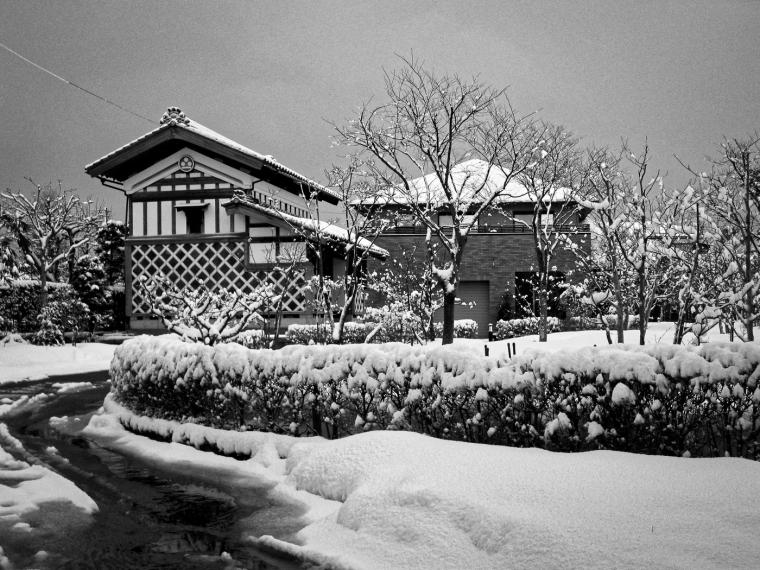 Niigata Dec '14-5