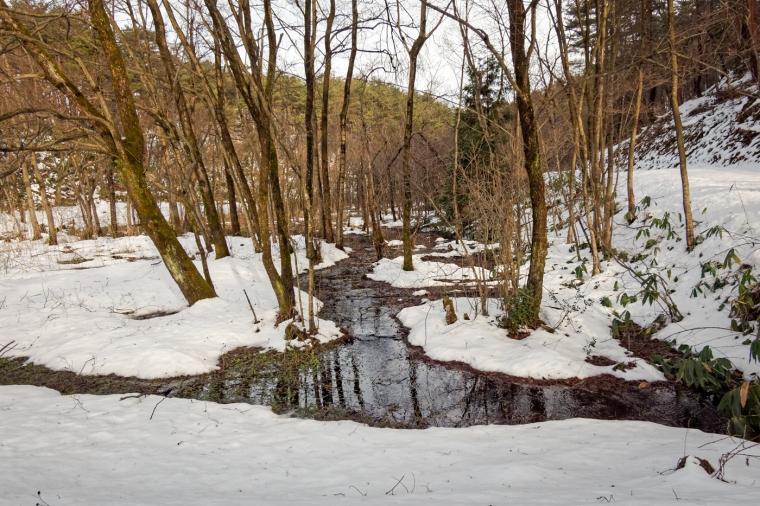 Snow Country, Niigata