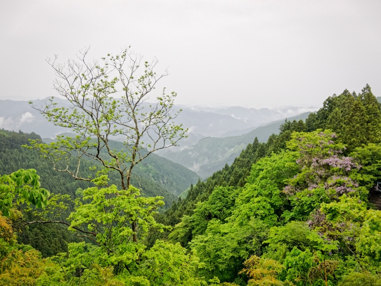 Chichibu Mountains, from Mitakesan