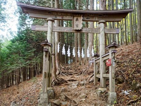 Torii Gate, Mitsumine