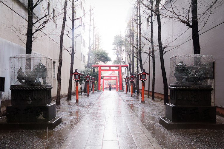 Hanazono Shrine, Shinjuku; Shinjuku Kills Me, circa 2012